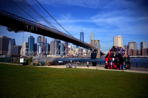 New York View